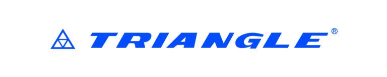 Logo_Triangle_C100M70